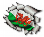 Ripped Torn Metal Design With Wales Welsh Dragon CYMRU Motif External Vinyl Car Sticker 105x130mm